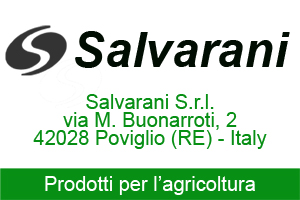 SALVARANI NEW BIG 300x200