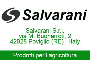 SALVARANI NEW BIG 300x200